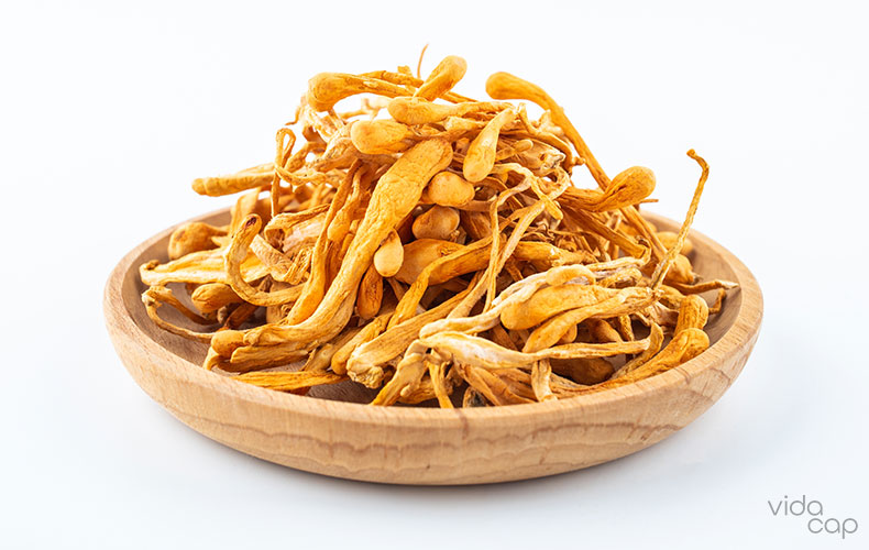 cordyceps-mushroom-benefits