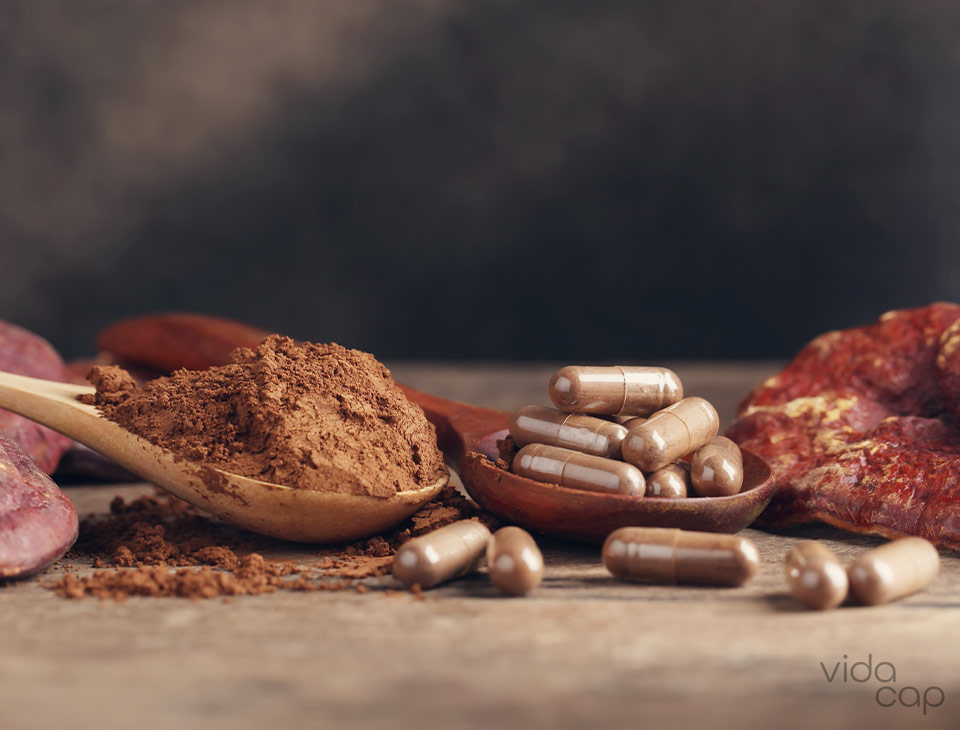 preview-mushroom-supplements-benefits