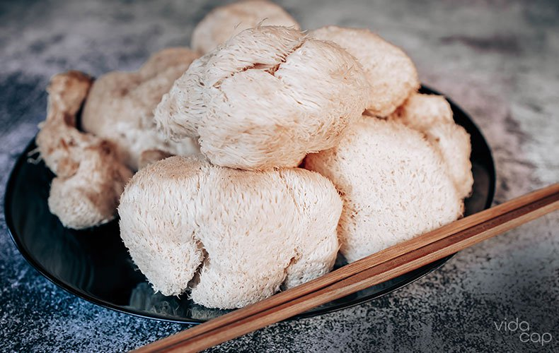 article-image-lions-mane-mushroom-soup-recipe