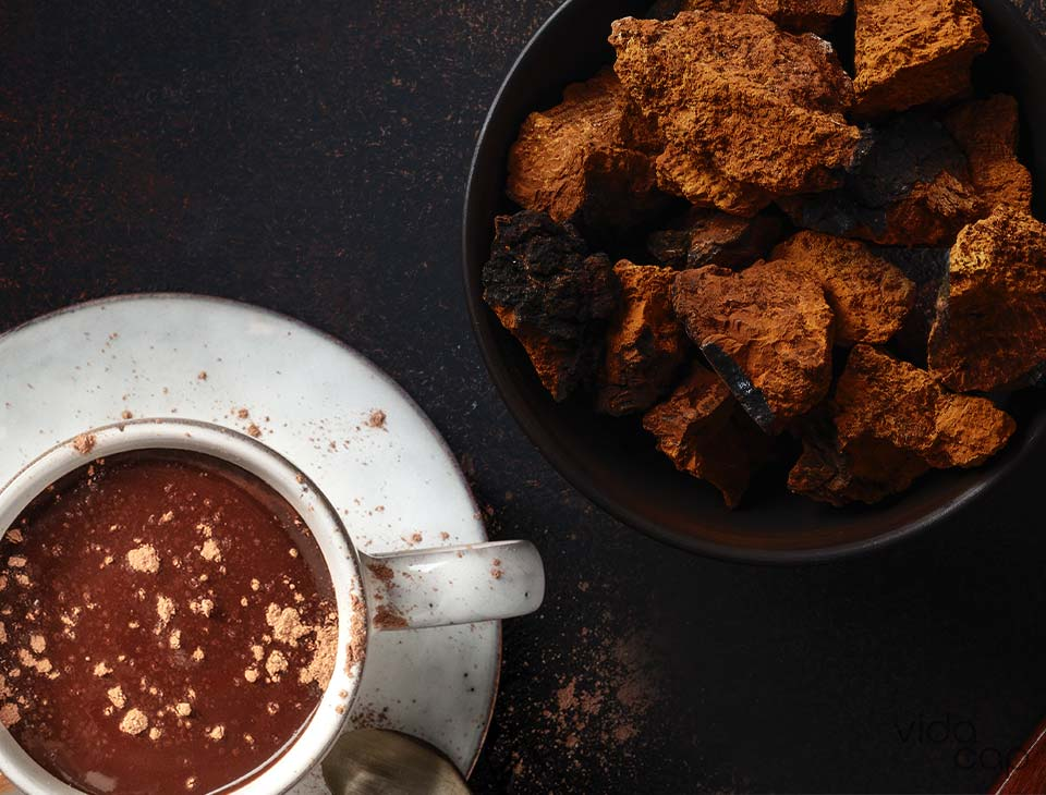 preview-hot_chocolate_with_mushrooms_recipe