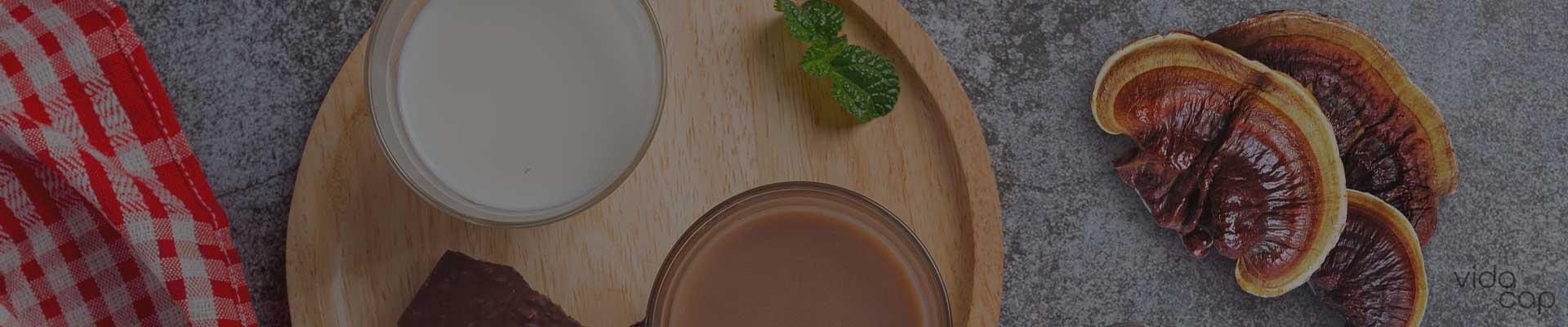 banner-how-to-make-reishi-chocolate-milk