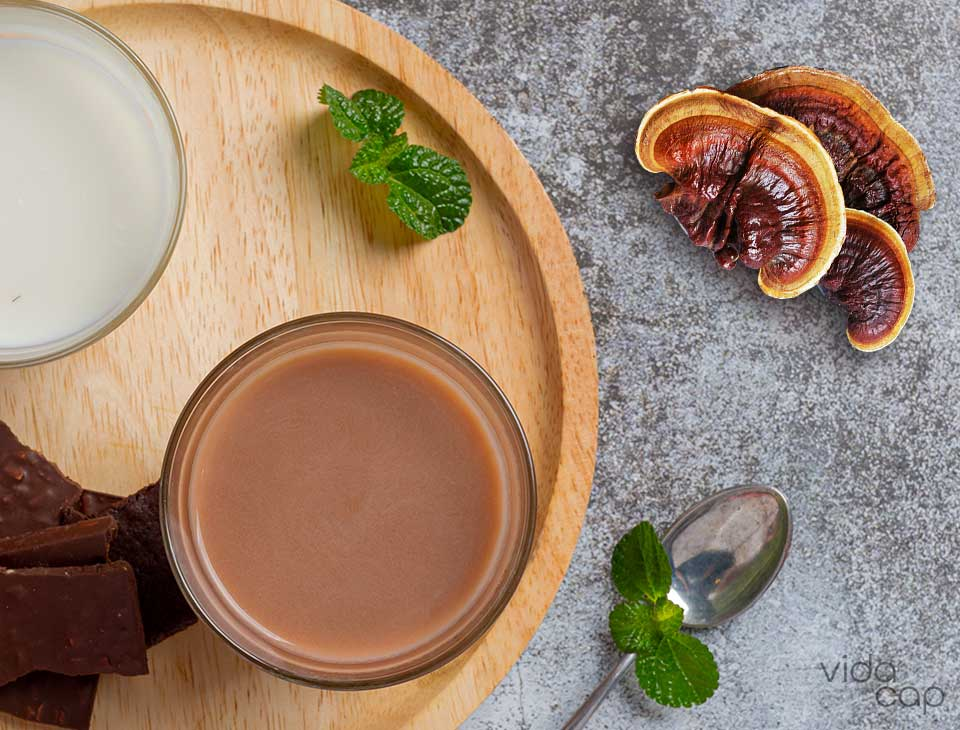 preview-how-to-make-reishi-chocolate-milk